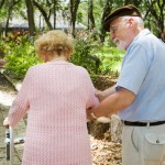 Exercise and Dementia Prevention